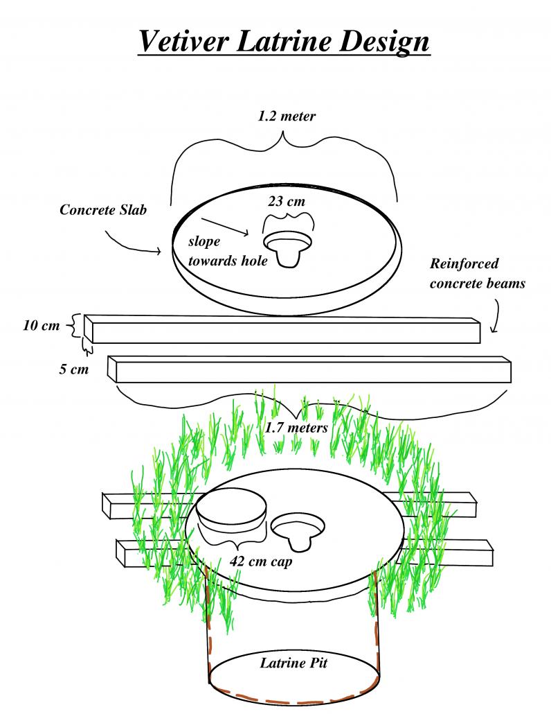 Vetiver latrine design overview